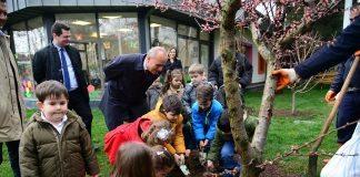 Kadıköy Belediyesi okullarda doğal tarım bahçeleri yapıyor!