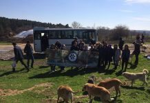 Marmara Üniversitesi Hayvanları Koruma Kulübü (MÜHAK) 2015 yılında on öğrencinin katılımıyla faaliyete geçmişti, şu an ise kalabalık bir aile.