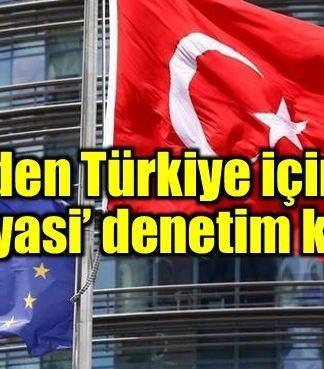 Avrupa Konseyi'nden Türkiye'ye siyasi denetim kararı