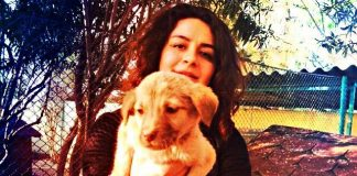 Çağ Üniversitesi Hayvanları Koruma ve Yaşatma Kulübü ceren saygılı