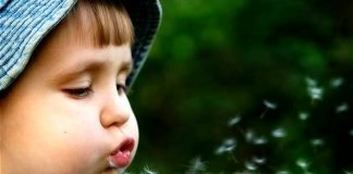 Dünyada hızla büyüyen hastalık: Alerji!