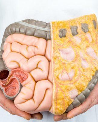 GAPS diyeti hangi hastalıklara iyi geliyor? Kimler için gerekli?