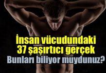 İnsan vücudu hakkında şaşırtıcı gerçekler