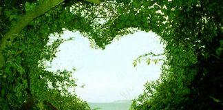 Kalp yogası nedir? Hem sağlık hem mutluluk