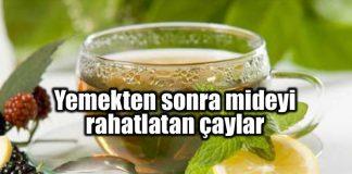 Mideyi rahatlatan sağlıklı çay tarifleri