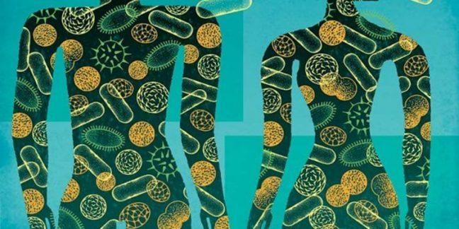 Mikrobiyom haritası