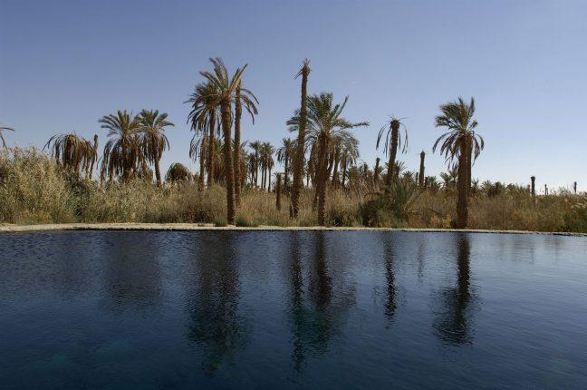 Mısır – Siwa Vahası