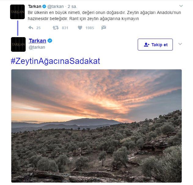 Tarkan, zeytinliklerin imara açıklmasına Twitter üzerinden tepki gösterdi. #ZeytinAğacınaSadakat