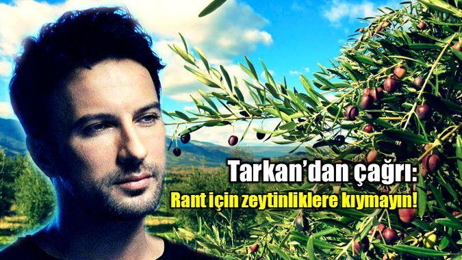 Tarkan'dan çağrı: Rant için zeytin ağaçlarına kıymayın!
