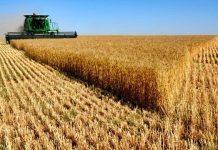 Türk gençler Belçika'da küresel tarım sorunlarına çözüm arayacak!