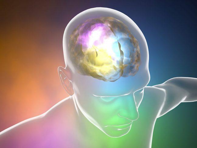 Beyin tümörü tedavisinde navigasyon yöntemi nedir?