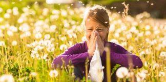 Çayır çimen alerjisi nedir? Belirtileri ve korunma yolları neler?
