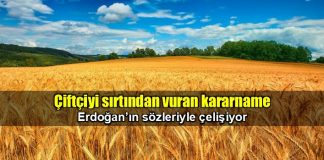 Erdoğan'ın sözleriyle çelişen kararname çiftçiyi sırtından vurdu