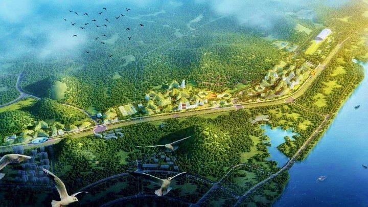 Çin ilk Orman Kenti projesi