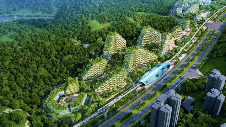 Çin ilk Orman Kenti inşaya hazırlanıyor
