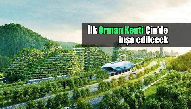 Orman Kenti ilk kez Çin'de inşa edilecek