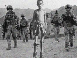 devlet gerekli mi ikinci dünya savaşı