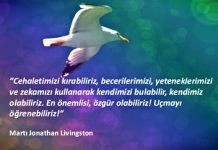 Düşünüyorum öyleyse özgürüm martı jonathan livingston