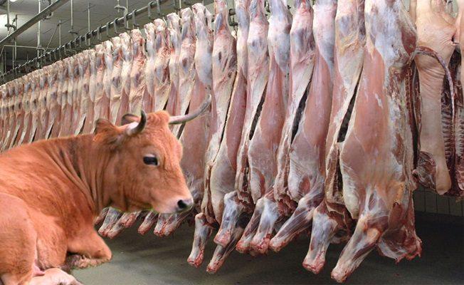 et gümrük vergisi düşürüldü ithal kararname