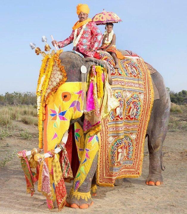 fil giydirici