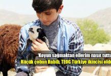 Koyun sağıp çobanlık yapan Habib Bitkin TEOG ikincisi oldu