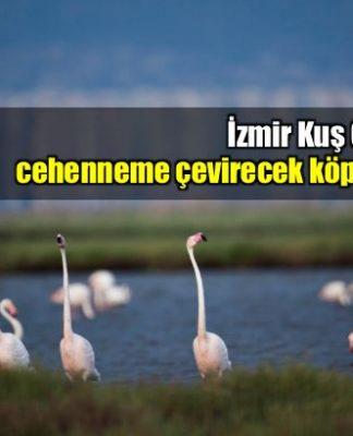 İzmir Kuş Cenneti cehenneme çevirecek köprü projesi