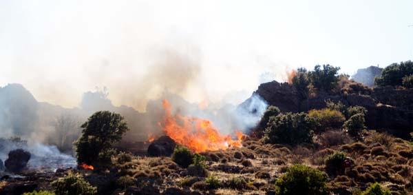 bodrum yokuşbaşı mahallesi yangın