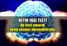 Beyin yaşı testi: Bu testi cevaplayarak beyin yaşınızı öğrenebilirsiniz!