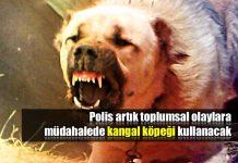 Polis toplumsal olaylara müdahalede kangal kullanacak