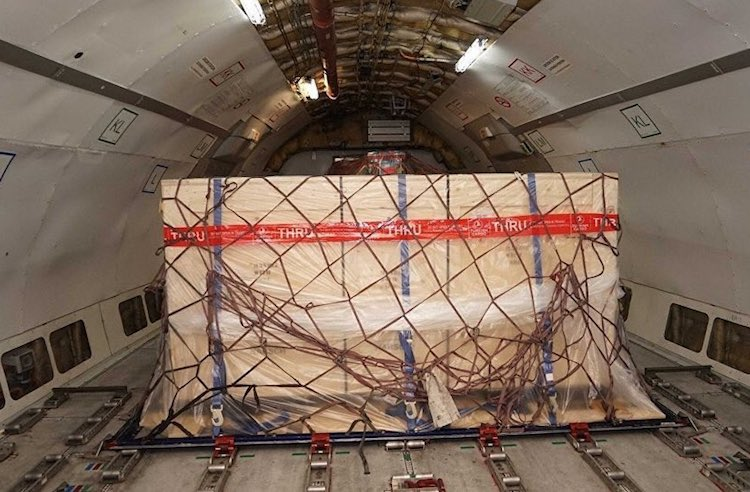Herakles Lahdi THY Turkish Cargo uçağı ile Antalya'ya getirildi.