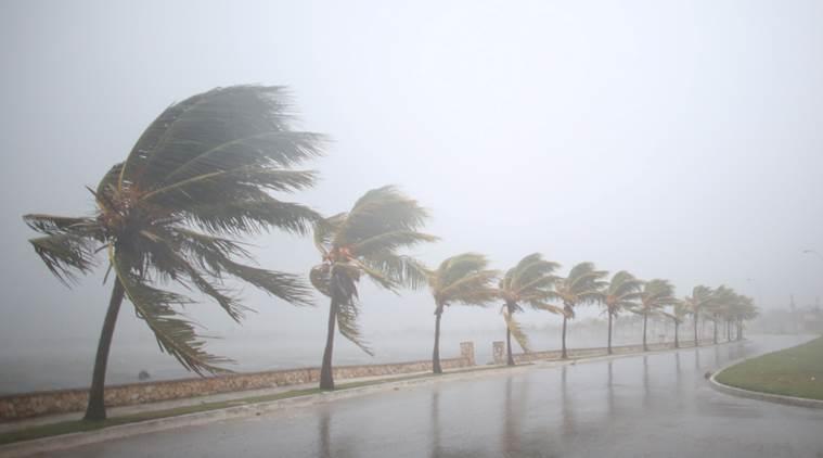 Irma kasırgası florida tampa carolina miami abd