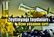 Zeytinyağı faydaları: Uzun ve sağlıklı yaşamın sırrı