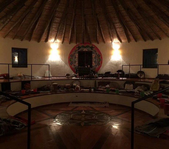 ayahuasca çayı nedir dmt peru amazonlar