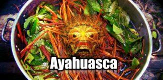 Ayahuasca: Peru'dan varoluşun gizemlerine yolculuk
