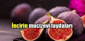 incir İncir ile gelen şifa: İncirin mucizevi faydaları ve incirli yulaf tarifi