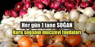 Soğanın faydaları: Mucizevi kuru soğan neye iyi gelir?