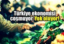 Türkiye ekonomisi coşmuyor, yok oluyor!