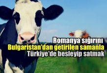 Vergi artışları Türkiye'de ekonomik kriz işareti mi?