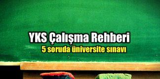 YKS çalışma rehberi: 5 soruda üniversite sınavı