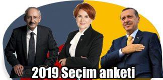 2019 seçim anketi: Cumhurbaşkanlığı seçimleri