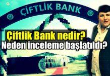 Çiftlik Bank nedir? Neden inceleme başlatıldı?