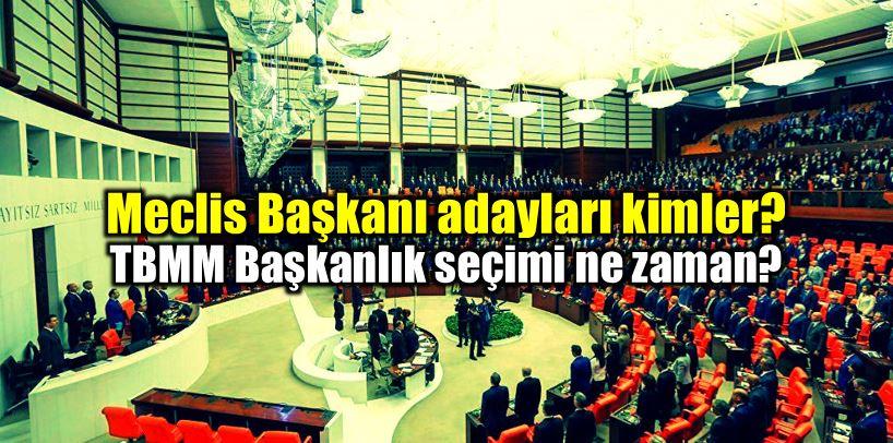 Partilerin Meclis Başkanı adayları kimler? Seçim ne zaman? CHP, MHP ve HDP'nin adayları belli oldu! AK Parti'nin adayı kim olacak?
