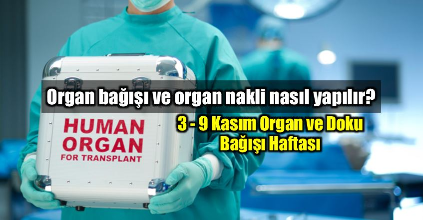 Organ bağışı ve organ nakli nasıl yapılır?