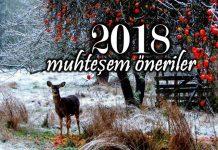 2018 yeni yıl için muhteşem öneriler