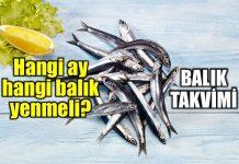 Hangi ay hangi balık yenmeli? Balık takvimi