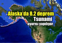 alaska deprem tsunami 8.2 earthquake
