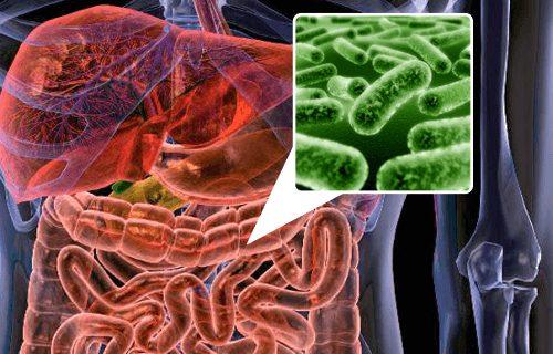 Parkinson hastalığının nedeni bağırsak florası olabilir mi?