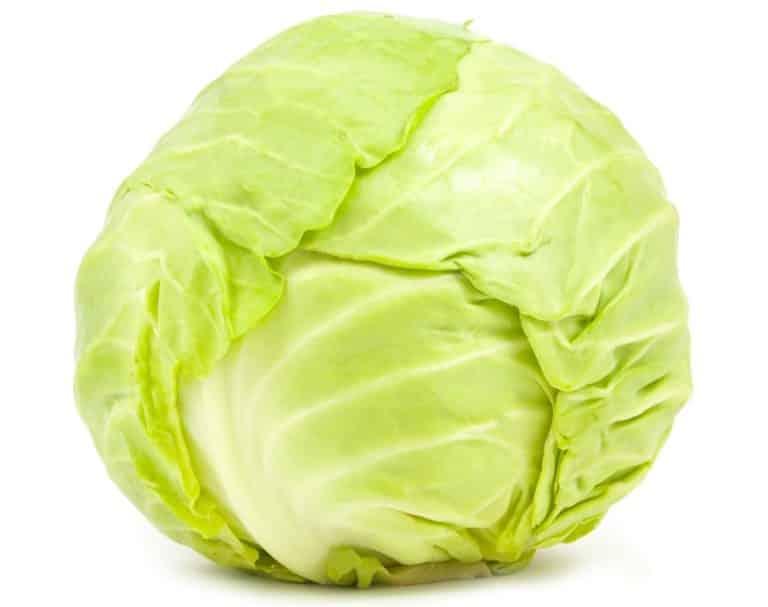 Beyaz lahana faydaları: Yapraklarında şifa var!