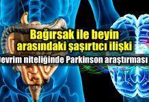 Beyin ve bağırsak ilişkisi Parkinson mikrobiyota