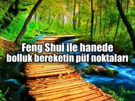 Feng shui ile bolluk ve bereketin püf noktaları